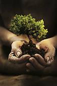 Cultivando valores de futuro